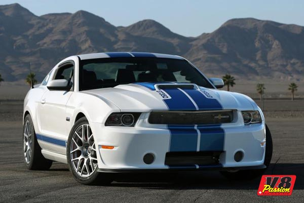 Shelby_GT350_White-600